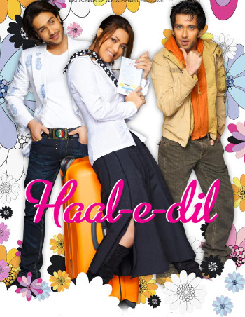 Haal E Dil 1 Hindi Song Lyrics English Translation and Meaning - Haal E Dil movie
